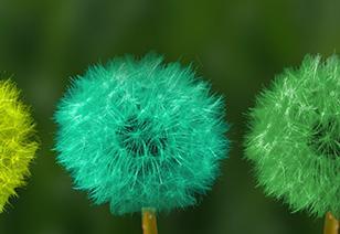 Aujourd'hui Coronavirus, et demain ? Newsletter Transition