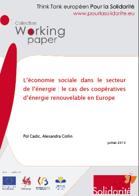 image couverture 1 . L'économie sociale dans le secteur de l'énergie : le cas des coopératives d'énergie renouvelable en Europe